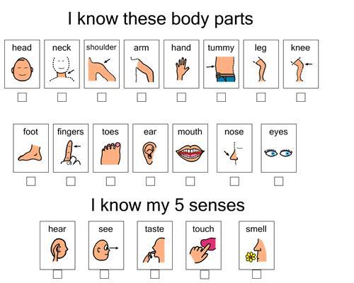 Body Parts symbols sheet - free printable | Body Part | Pinterest ...