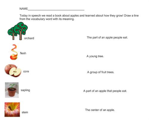Apple facts matching worksheet