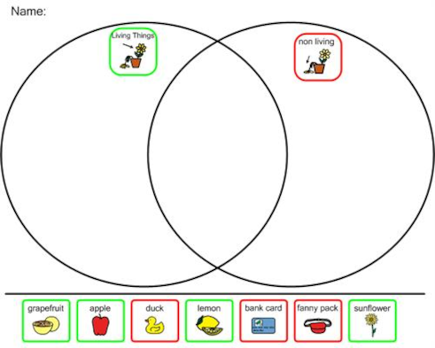 Living things vs non living things venn diagram ccuart